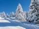 冬天作文的写法指导